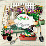 Садовые цветы в Курске